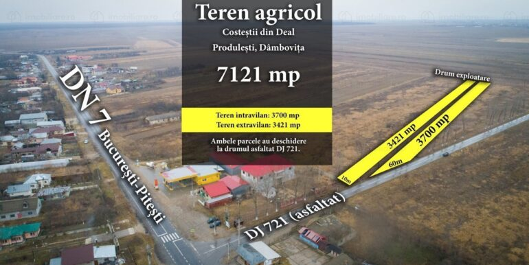 teren-agricol-de-vanzare-dambovita-costestii-din-deal-149833120