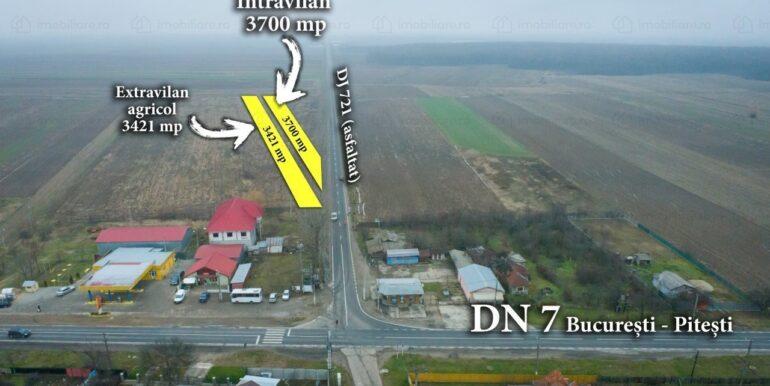 teren-agricol-de-vanzare-dambovita-costestii-din-deal-154371958